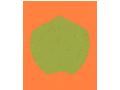 Personal Property Insurance Icon - PAIB Insurance